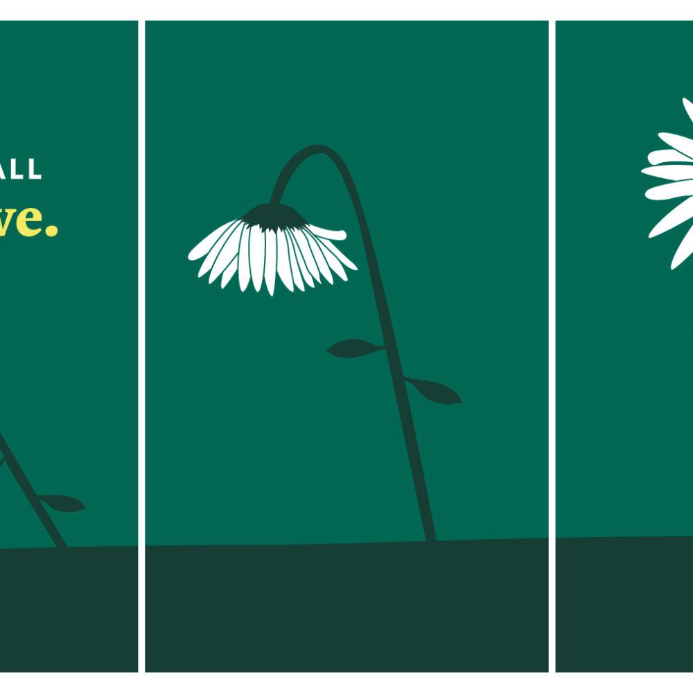 Illustrated Sunflower